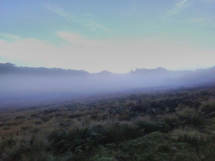 Туман на плато Хортон